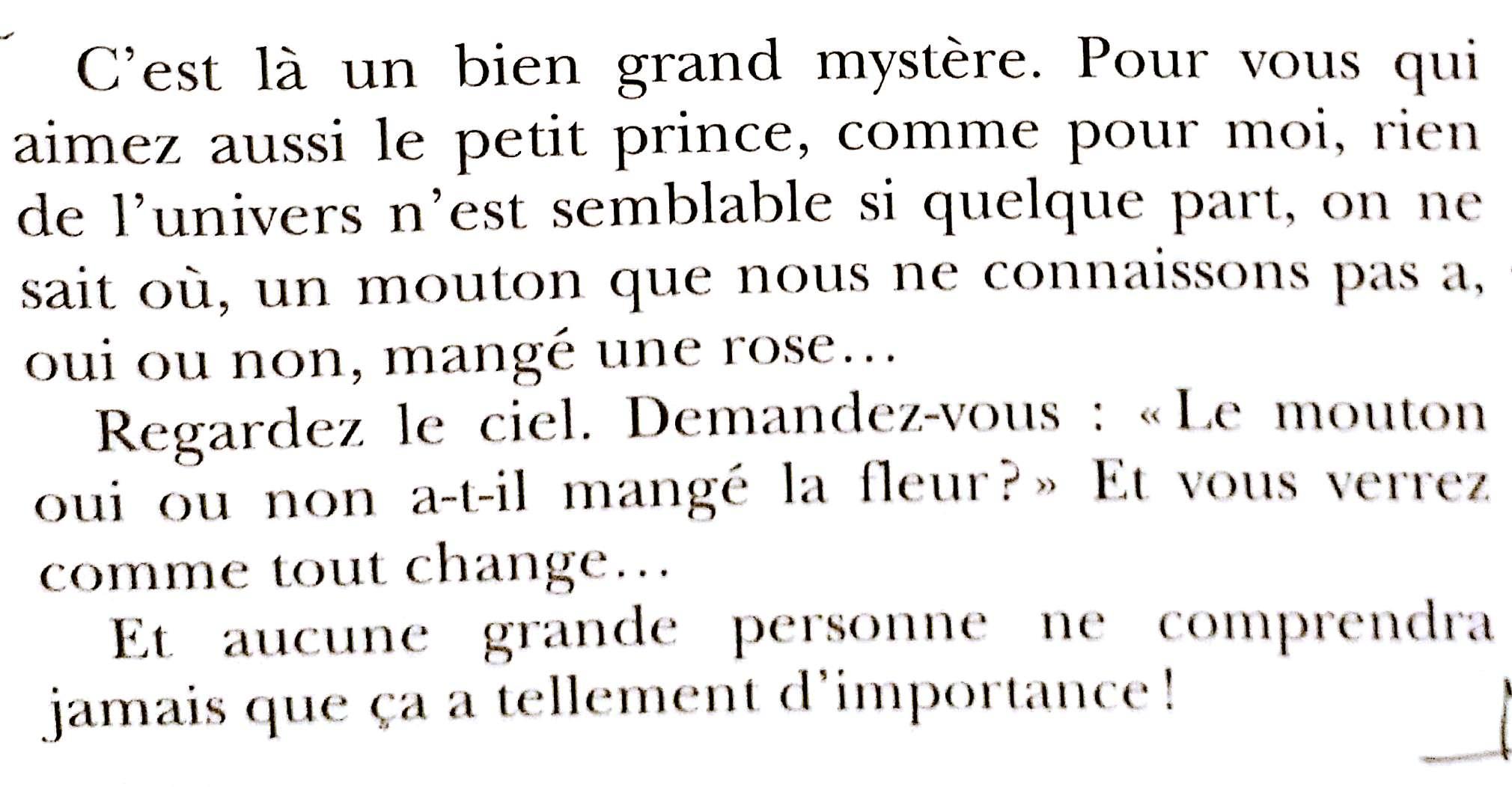 Petit Prince_la fin